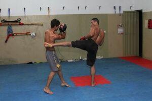Lutadores Wilson e Luan deverão disputar nas categorias médio e leve de MMA